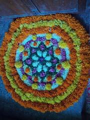IMG_20160914_101541 (bhagwathi hariharan) Tags: onam pookalam flower rangoli kolam carpet floral nalasopara nallasopara virar aathapookalam tiruonam
