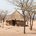 Himba village: dance with your child