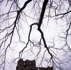 Auchindoun (megalithicmatt) Tags: auchindoun castle auchindouncastle ruin cabrach cn400 branches zeissikonnettar
