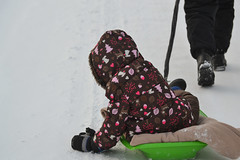 Riding the Sled Back Home (Vegan Butterfly) Tags: outside outdoor winter snow vegan child kid person cute adorable play playing sled sledding