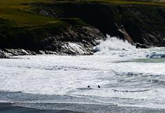 Hell of a day for a swim at Abereiddy (Kenvyn Davies) Tags: 2016 abereiddyabereiddi beach coast cymru landscape nikond750 northpembrokeshire ocean outdoors pembrokeshire pembrokeshirecoastnationalpark sea seascape seashore seaside surf tamronsp2470mmf28divcusd wales walescymru water waves westwales white stdavids cymruwales