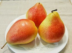 Forelle pears (elnina999) Tags: forelle pear european sweet colorful delicious fruit autumn samsungs6 healthy fresh herloom juicy heirloom red yellow speckled