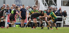 840A0127 (Steve Karpa Photography) Tags: henleyhawks henley rugby rugbyunion game sport competition outdoorsport redruth