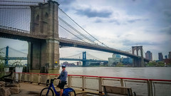 Amanda cycling beside the famous Brooklyn bridge in NYC.