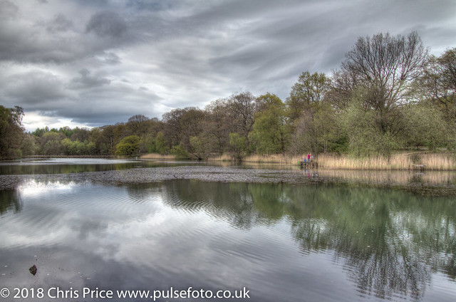 Cannop Ponds. Forest of Dean