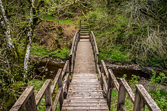 A Bridge For A Troll (Brian Travelling) Tags: dalcairnie dalcaernie dalcarnie dalcarney falls ayrshire east south southayrshire eastayrshire gorge woods forest gallowayforestpark bridge wooden waterfalls waterfall scotland scenery scenic