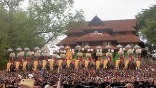 Thrissur Pooram 2017 - 06