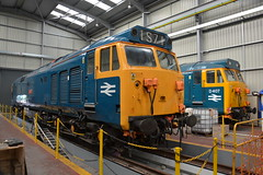 50044 and D407 Kidderminster TMD 07/05/2017 (Brad Joyce 37) Tags: 50044 d407 class50 kidderminstertmd locomotive engine diesel train blue severnvalleyrailway depot