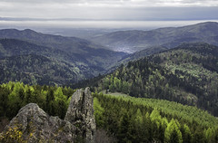 Juste avant la pluie (mrieffly) Tags: hautesvosges htrhin valléedelathur geishouse printemps2017 mélèze canoneos50d