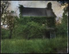 Waiting.... (Sherrianne100) Tags: waiting lonely naturetakesover deserted dilapidated oldhouse ozarks missouri