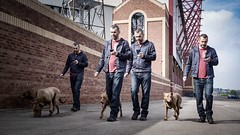 251/365 Reservoir Dogs