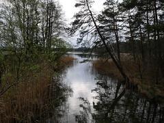2017-04-25 an den Osterseen (wulfwalker) Tags: see ostersee lake bayern oberbayern wasser wals natur deutschland