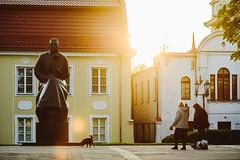 Statue | Kaunas #138/365