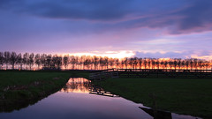 Dutch spring evening (M a u r i c e) Tags: sunlight sunset horizon polder pond water trees silhouettes reflections sky nature landscape fence longexposure explore