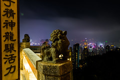 Hong Kong's Guardian (Jared Beaney) Tags: canon6d canon hongkong hongkongphotography asia china victoriapeak cityskyline nightphotography nightlandscapes skypeak citylights views lookout
