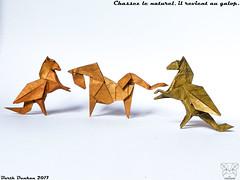 Chassez le naturel, il revient au galop. (Magic Fingaz) Tags: barthdunkan caballo cavallo cheval horse koń konj kuda ló paard pferd άλογο кінь лошадь घोड़ा ม้า 말 うま 马