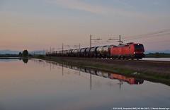 E191 016 (MattiaDeambrogio) Tags: treno treni trains e191 vectron db cargo vespolate