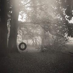 """""""Wenn du selber nicht bei dir bist, wird keiner bei dir bleiben."""" -MoTrip (soleá) Tags: blackandwhite autumn haunting holland columpio mist swing carmengonzalez solea square squareformat"""