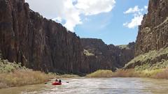 Owyhee IMG_5752 (Steve Roelof) Tags: april blm bureauoflandmanagement nature oregon outdoor owyheeriver pacificnorthwest rafting river spring wildandscenic unitedstates