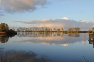 Am Morgen an der Eider; Süderstapel, Stapelholm (37)