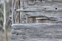 Weathered (Laurie4593) Tags: farm farmyard weathered wood shed old prairies 50mm canonrebelt3i sunny barnboard