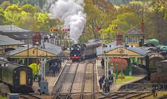 Arrival At Horsted Keynes (brian.m.denton) Tags: steamlocomotive locomotive steam train railway steamtrain steamengine station bluebellrailway horstedkeynes westsussex england briandenton timecapturer wwwtimecapturercom sonya850dslr