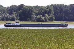 Péniche ZITA remontant le Rhin au nord de Cologne -juillet 2016 2016-07-19 14-02-38_45 mod et rét (vincent.lempereur) Tags: bateau péniche rhin fleuve navigationfluviale