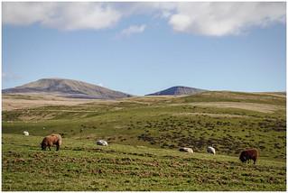 Brecon Beacon Landscape