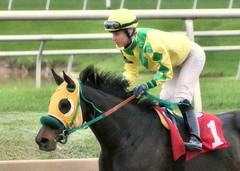 "2017-04-23 (39) r9 Forest Boyce on #1 Tricky Escape (JLeeFleenor) Tags: photos photography md marylandracing maryland marylandhorseracing laurelpark jockey جُوكِي ""赛马骑师"" jinete ""競馬騎手"" dżokej jocheu คนขี่ม้าแข่ง jóquei žokej kilparatsastaja rennreiter fantino ""경마 기수"" жокей jokey người horses thoroughbreds equine equestrian cheval cavalo cavallo cavall caballo pferd paard perd hevonen hest hestur cal kon konj beygir capall ceffyl cuddy yarraman faras alogo soos kuda uma pfeerd koin حصان кон 马 häst άλογο סוס घोड़ा 馬 koń лошадь outdoors outside forestgboyce femalejockey femaleathlete"