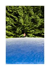 (Antonio Gutiérrez Pereira) Tags: antoniogutierrezfotografia dinamocoworking retrato mirada color surreal portrait