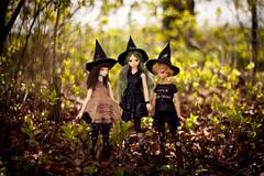 III (koroa) Tags: bjd doll bluefairy daydream may sally witch witches halloween feeriedoll feeriedollatelier