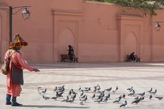 Water Carrier in Marrakesh (jennifer.stahn) Tags: travel travelphotography maroc marocco marokko marrakech marrakesch marrakesh koutoubia mosque moschee wasserträger water carrier dailylife tauben pigeons nikon jennifer stahn