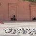 Water Carrier in Marrakesh