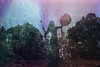 (Malykhanov) Tags: crimea silhouette sky surreal spring nature forest film fog filmphoto trip travel trees tree multipleexposure mist mysticism mystic metamorphosis magic mysterious shamanism 35mm psychedelic postgothic analog atmosphere abstract art girl