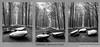 B&W Dolmen (MikeChet) Tags: belgium places tervuren tervurenpark vlaanderen