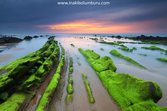 ON THE GREEN SIDE OF LIFE (Obikani) Tags: barrika bizkaia euskadi beach rocks sea ocean seascape landscape flysch sunset green clouds water canonikos