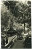 Jardí de Son Marroig (Arxiu del So i de la Imatge de Mallorca) Tags: mallorca deia deya jardi jardin garden marroig arxiduc archiduque archduke