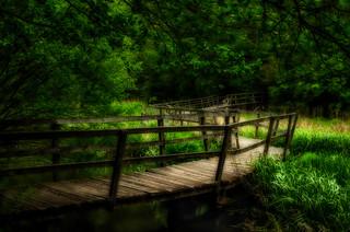 Loder Valley Foot Bridge