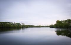 IMG_2404 (DB - Fotografie) Tags: water darkness wasser green nature woods thinking backtonature photography fotografie thinkoutloud