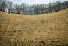 Distortions and perspectives (Raphs) Tags: montesubasio umbria italy italia mortarogrande sinkhole doline winter perspective round horizon trees grass brown raphs canoneos70d tamronspaf1750mmf28xrdiiildaspherical