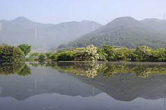 Reflection Scenery (Johnnie Shene Photography(Thanks, 2Million+ Views)) Tags: reflection scenic scenery landscape lake lakescape pond bigpond reservoir nature natural wild tranquility wideangle adjustment mountain photography horizontal outdoor colourimage fragility freshness nopeople foregroundfocus longdistance rural local regional korea wiyangji waterfront surface travel destination attraction landmark interesting awe wonder gyeongnam contemplation peace freshwater trees plants canon eos600d rebelt3i kissx5 sigma 1770mm f284 dc macro lens 위양지 풍경 경남 호수 반영