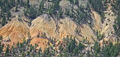 Cariboo Formation (Jonathan F.V.) Tags: cariboo chilcotin britishcolumbia beautifulbc hellobc canada bc hoodoos samyang135mmf20edumc sony a7r