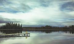 invisible (rockinmonique) Tags: alberta lake sky reflections blue green trees dock landscape moniquew canon canont6s sigma copyright2017moniquew