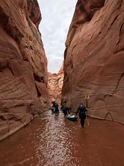 hidden-canyon-kayak-lake-powell-page-arizona-southwest-IMG_6513