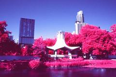 Gazebo Infrared (infobong) Tags: austin infrared infraredfilm colorinfrared colorinfraredfilm
