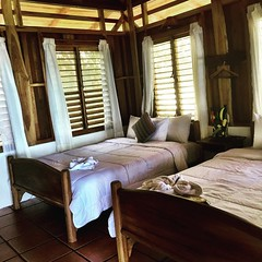 La Gemela 2.  One of our rooms. #puravida #costarica #LaCusinga #rainforest #travel #vacation #expotur
