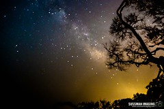 Milky Way (The Suss-Man (Mike)) Tags: driftwoodbeach georgia glynncounty jekyllisland milkyway nature night sky sonyilca77m2 stars sussmanimaging thesussman
