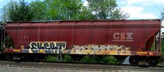 eksrt - beser (timetomakethepasta) Tags: eksrt beser freight train graffiti art csx grainer csxt ayo tsu benching selkirk new york photography