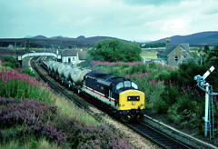 Meanwhile up in scotland admist the flowerin heather and Rosebay...a bit of Growlage was to be had......6B70 37407 Loch Long Inverness-Millerhill ABS 25-06-1992 (the.chair) Tags: 6b70 37407 loch long invernessmillerhill abs aug 1992