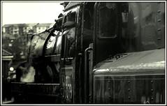 Steam locomotive 76079 (* RICHARD M (Over 6 million views)) Tags: candid mono blackwhite whitbystation whitby northyorkshire steamlocomotive steamloco steamlocomotive76079 steamloco76079 steam britishrailwaysstandardclass4mt260 preservedsteamlocomotiveengine heritagesteamlocomotiveengines steamengines railwayconservation nymr northyorkmoorsrailway railways steamtrains enginedriver traindriver evocative nostalgia nostalgic railtravel transport publictransport steamtrain steamengine england unitedkingdom uk greatbritain gb britain britishisles timeless